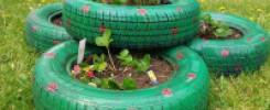 Грядка из ШИН для клубники: 8 фото идей для дачи