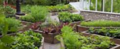 Фото-подборка самых красивых и удобных грядок. 10 идей для огорода