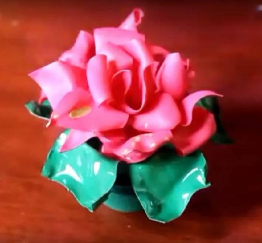 для роза картинки из пластика корм