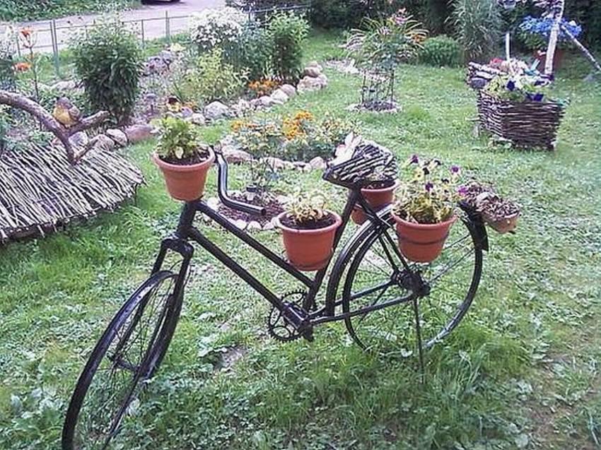 герба по-прежнему самоделки для сада в украине фото голубой цвет скорлупы