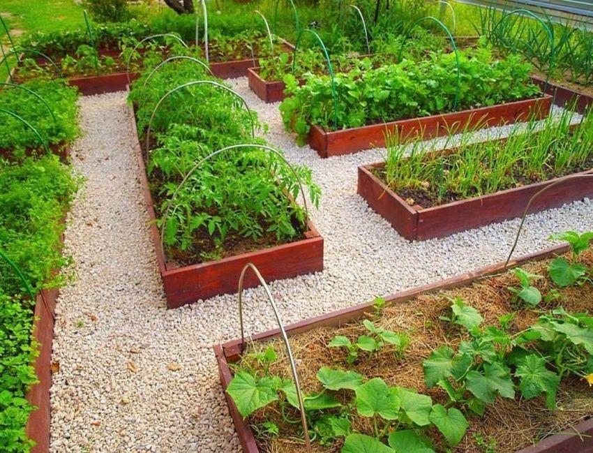 как делать грядки на огороде из досок